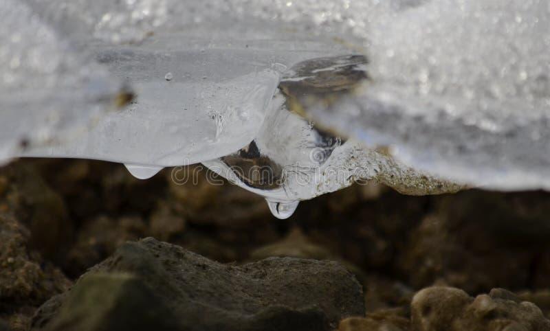 Onder het ijs stock afbeelding