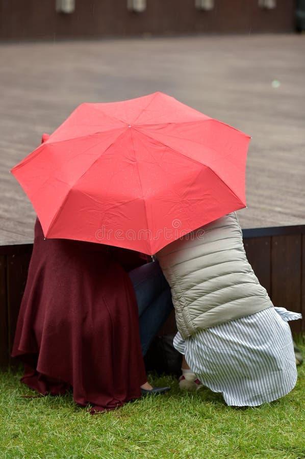 Onder regen twee royalty-vrije stock fotografie