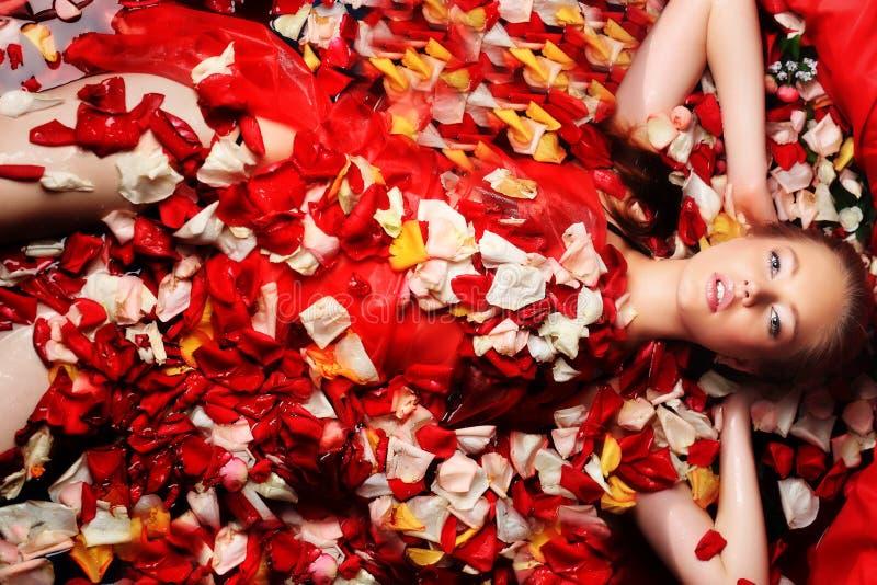 Onder rode bloemblaadjes stock fotografie