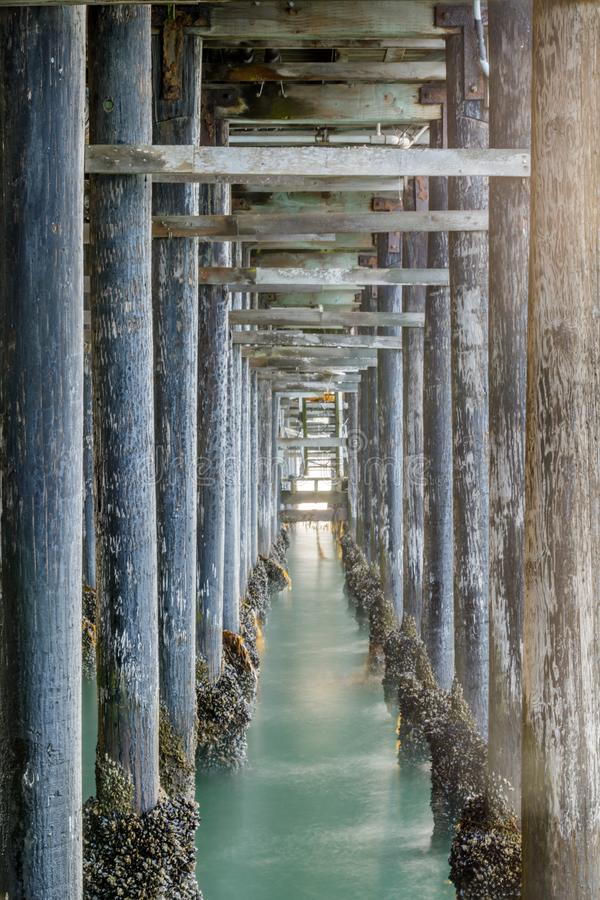 Onder Santa Cruz Municipal Wharf stock foto's