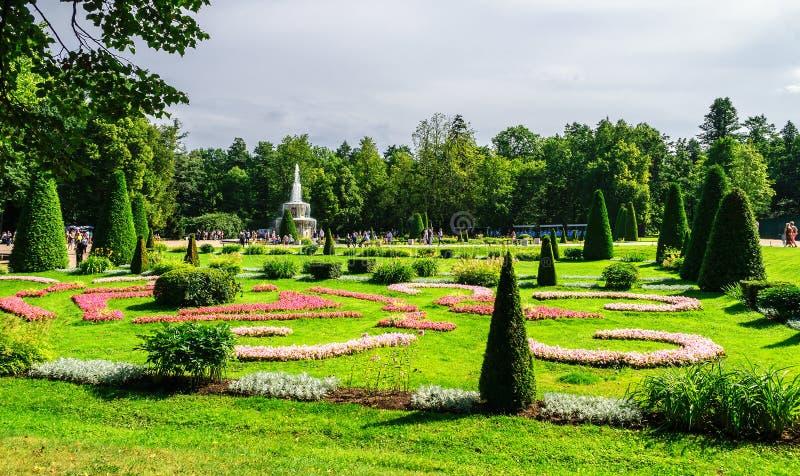 Onderaan park in Peterhof stock afbeeldingen