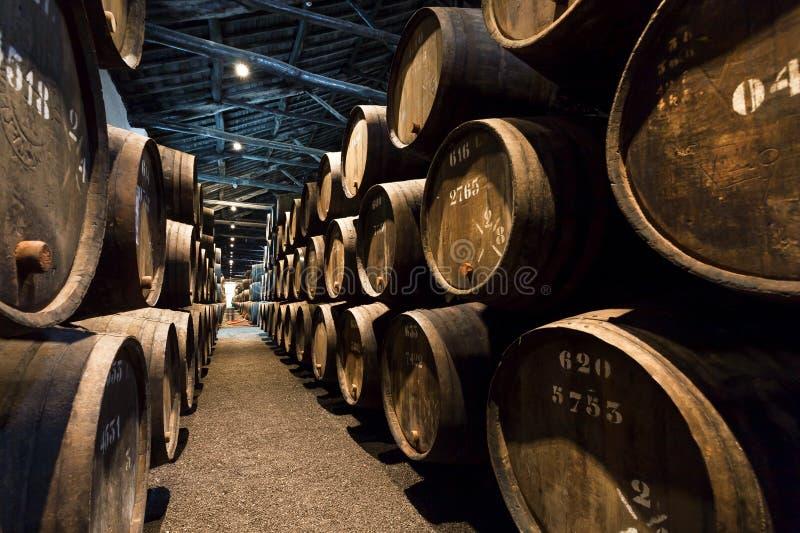 Ondergronds van de traditionele wijnmakerij met de donkere galerij van de wijnkelder en aantallen houten vaten voor havenwijn stock afbeeldingen