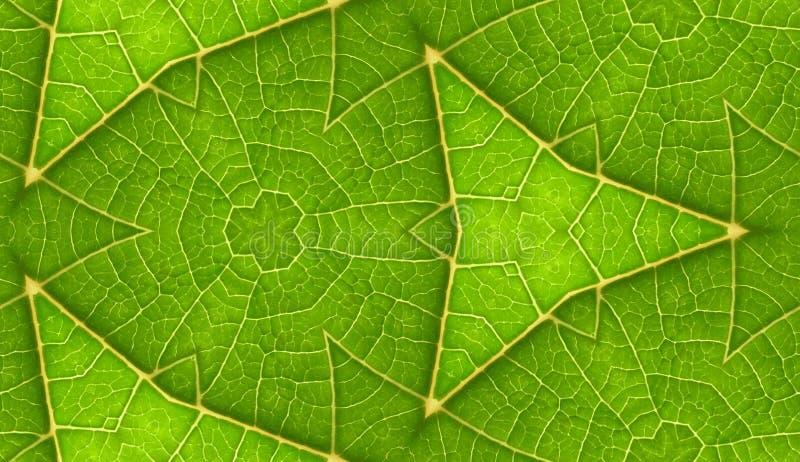 Onderkant van de Groene Achtergrond van de Blad Naadloze Tegel royalty-vrije stock afbeelding