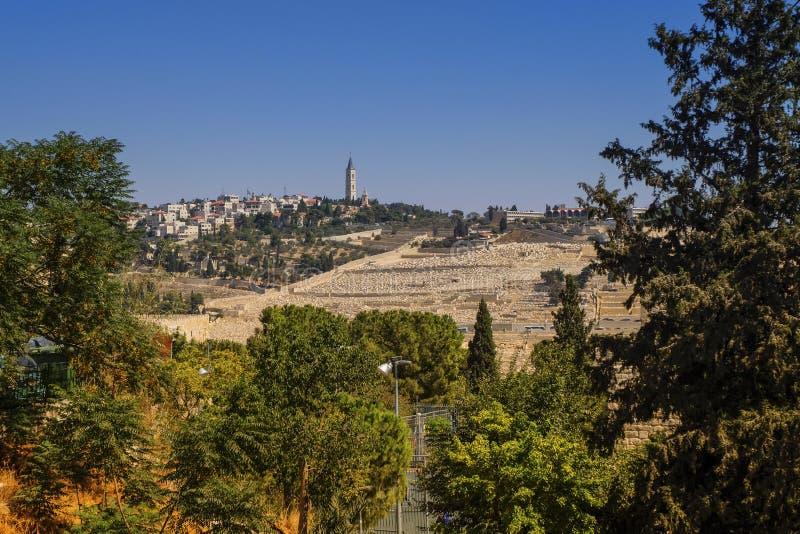 Onderstel van Olijven, Jeruzalem, Israël stock fotografie
