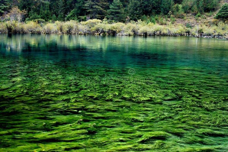 Onderwater installaties stock fotografie