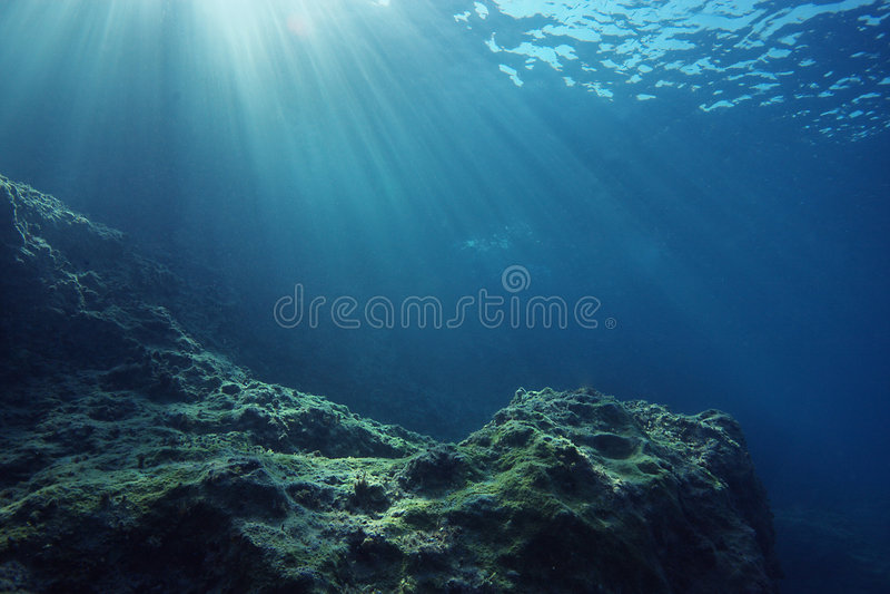Onderwater landschap met zonnestralen stock afbeelding
