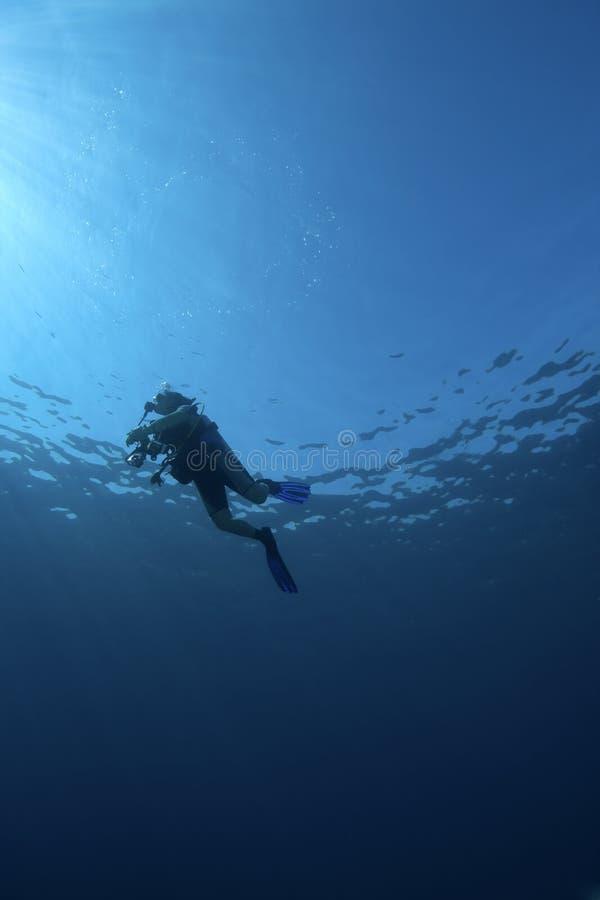 Onderwater scène: opduikende scuba-duiker stock foto