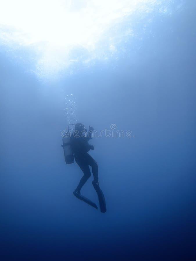 Onderwaterduiker in onderwaterwereld stock foto
