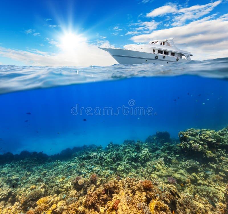 Onderwaterkoraalrif met horizon en water stock afbeelding