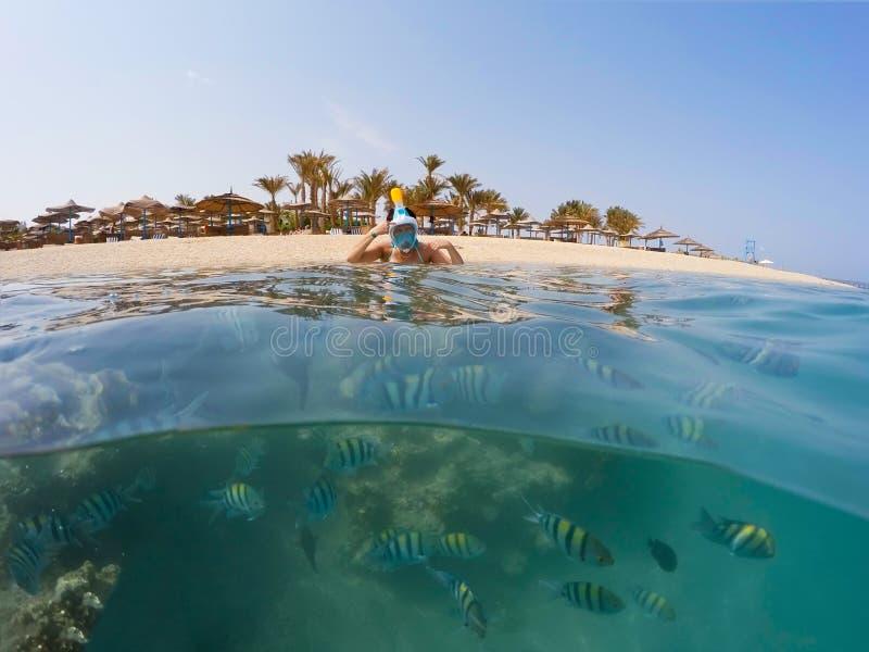 Onderwateroppervlakte gespleten mening van koraalvissen en het verstand van het toevluchtstrand royalty-vrije stock foto's