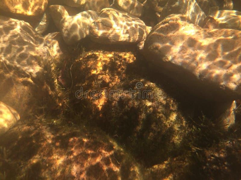 Onderwaterrotsen stock afbeelding