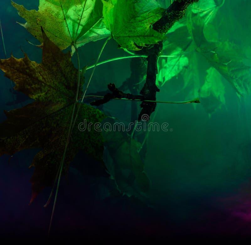 Onderwaterverontreiniging met het Materiaal van de Kleurenchemie stock afbeeldingen