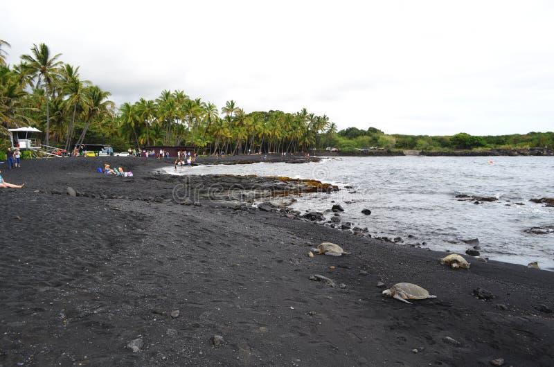 Onderwaterwaarnemingscentrum Marine Park royalty-vrije stock foto's
