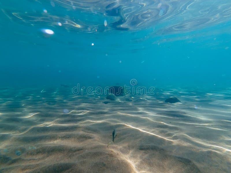 Onderwaterwereld aan de oppervlakte en het zand bij de bodem royalty-vrije stock fotografie