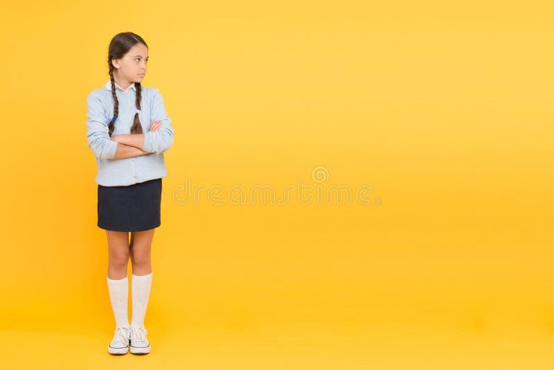 Onderwijsactiviteit Homeschooling of het bezoeken regelmatige school Efficiency van het bestuderen Aanbiddelijk schoolmeisje ijve royalty-vrije stock afbeelding
