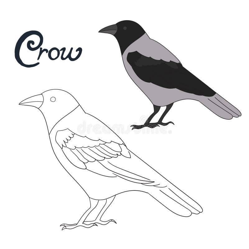 Onderwijsspel het kleuren de vogelvector van de boekkraai stock illustratie