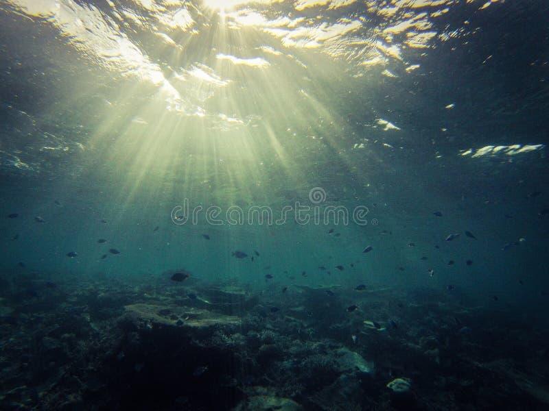 onderzees stock foto's