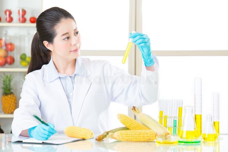 Onderzoeken van de testresultaat van het genetische modificatievoedsel is belangrijk royalty-vrije stock foto's