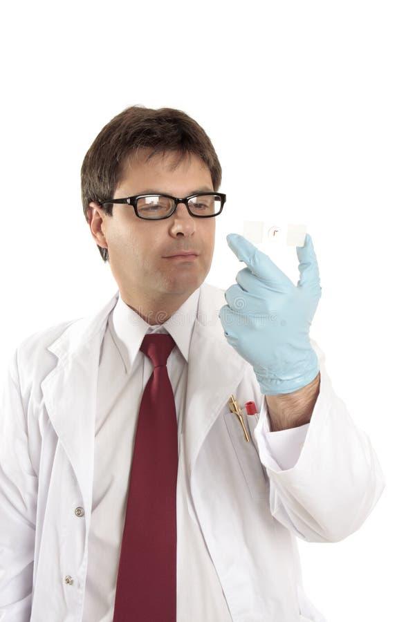 Onderzoeker die een microscoopdia bestudeert stock foto's