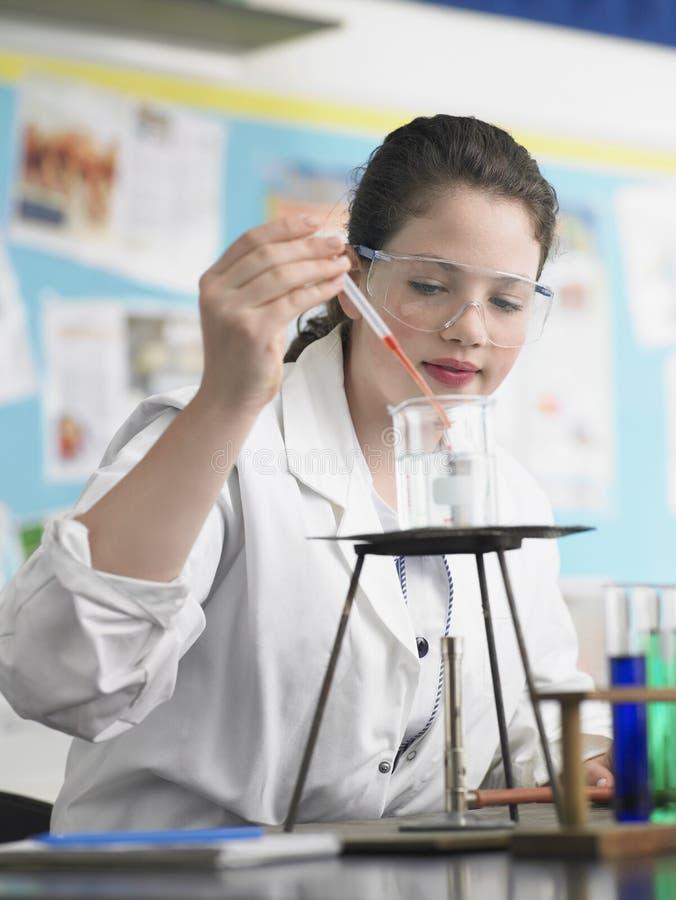 Onderzoeker Working In Lab stock afbeelding