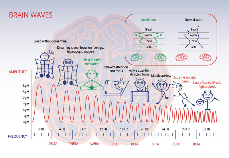 Ondes cérébrales illustration stock