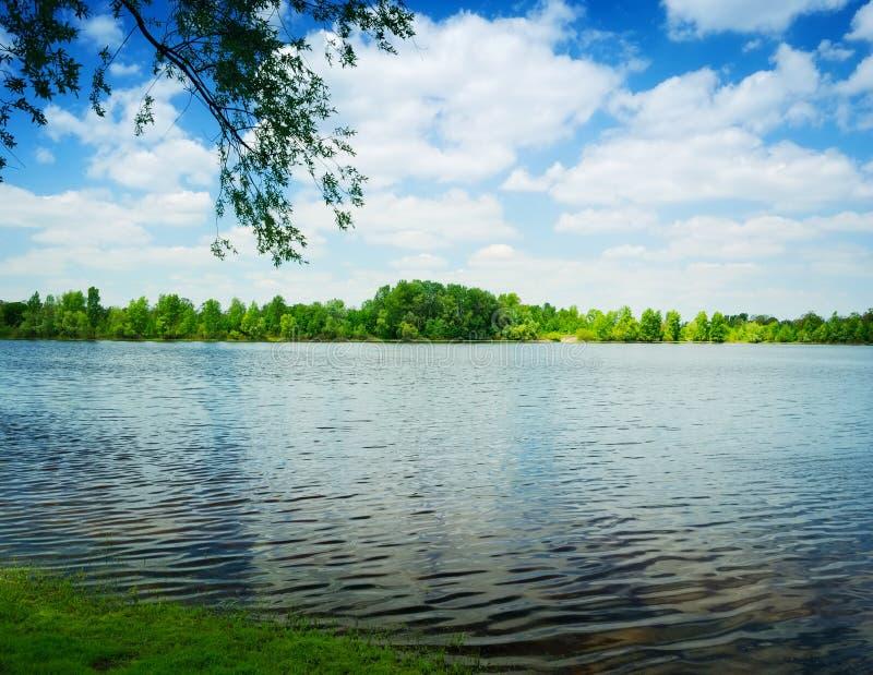Ondes sur l'eau du lac et des arbres verts photos libres de droits