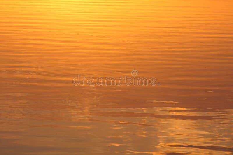 Ondinhas no Lit da água em Sun imagens de stock