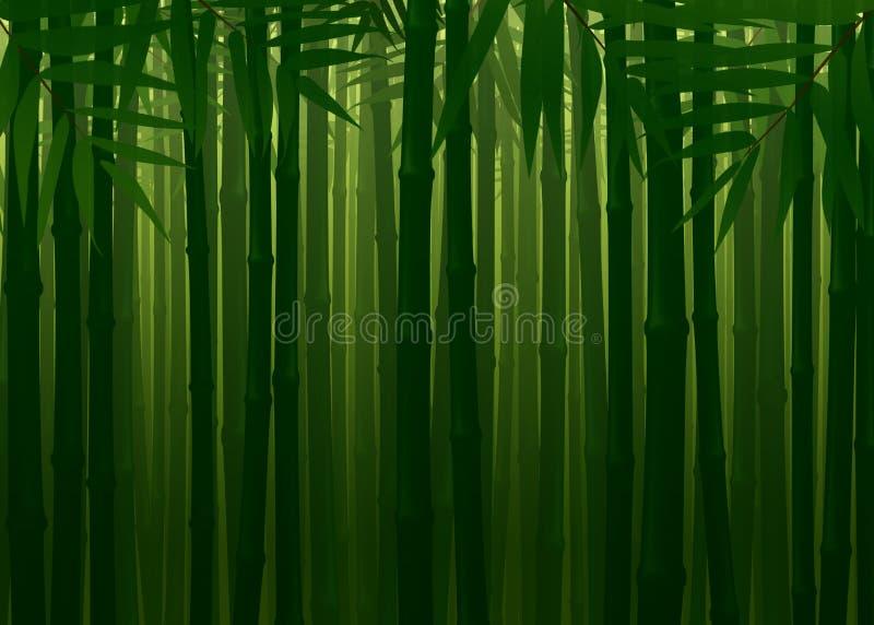 Ondoordringbaar Bamboe Forest Spring Autumn Texture Background stock foto