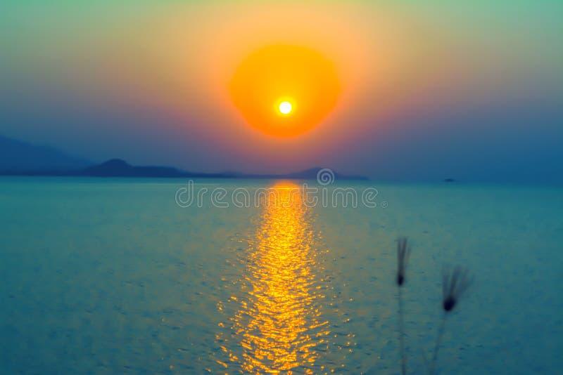 Onduidelijk beeld van zonsondergang en abstracte de aardachtergrond van de grasbloem stock afbeelding