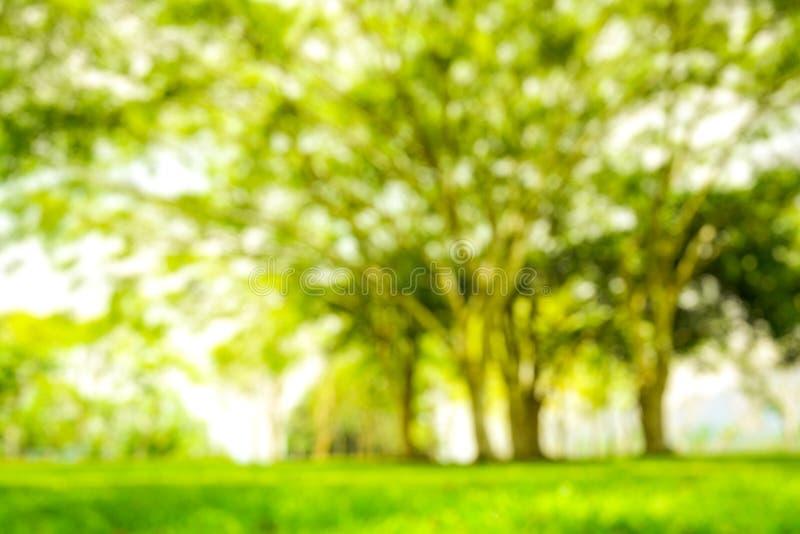 Onduidelijk beeldpark met de bokeh lichte achtergrond, aard, tuin, lente en zomer stock afbeelding