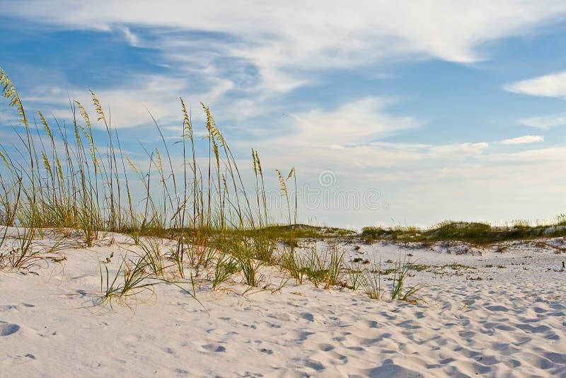 Ondulaciones de la duna de arena foto de archivo libre de regalías