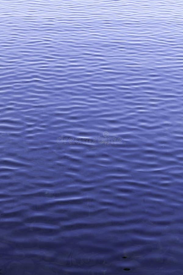 Ondulado, lago, superficie del agua, cierre para arriba imágenes de archivo libres de regalías