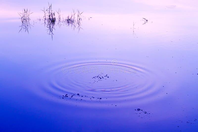 Ondulation de l'eau images stock