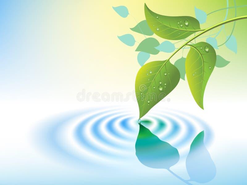 Ondulation et lame de l'eau illustration libre de droits
