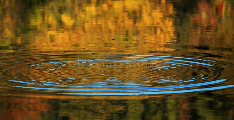 Ondulation sur la surface de l'eau photographie stock