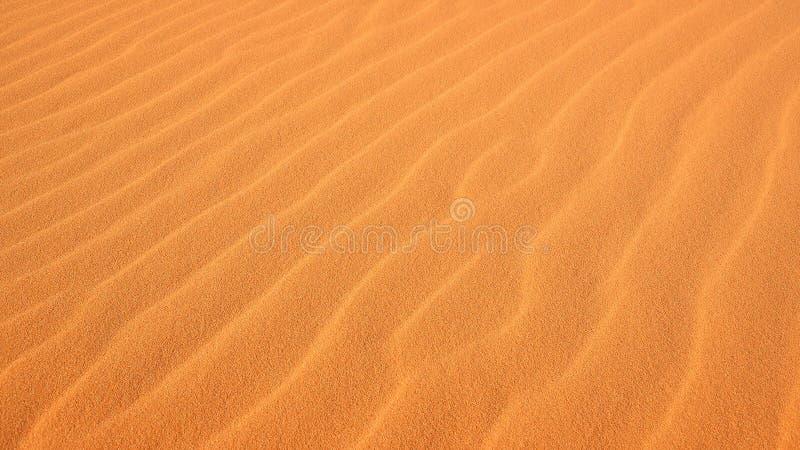 Ondulations dans le sable au parc de Coral Pink Sand Dunes State photographie stock