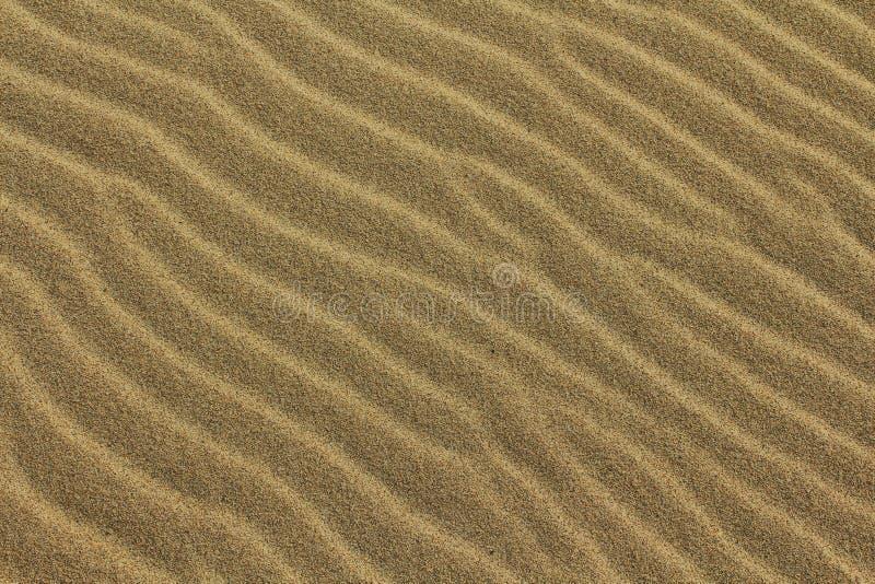 Ondulations de sable images libres de droits