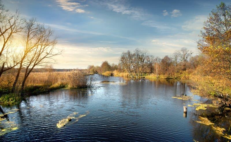 Ondulazione sul fiume di autunno fotografia stock libera da diritti