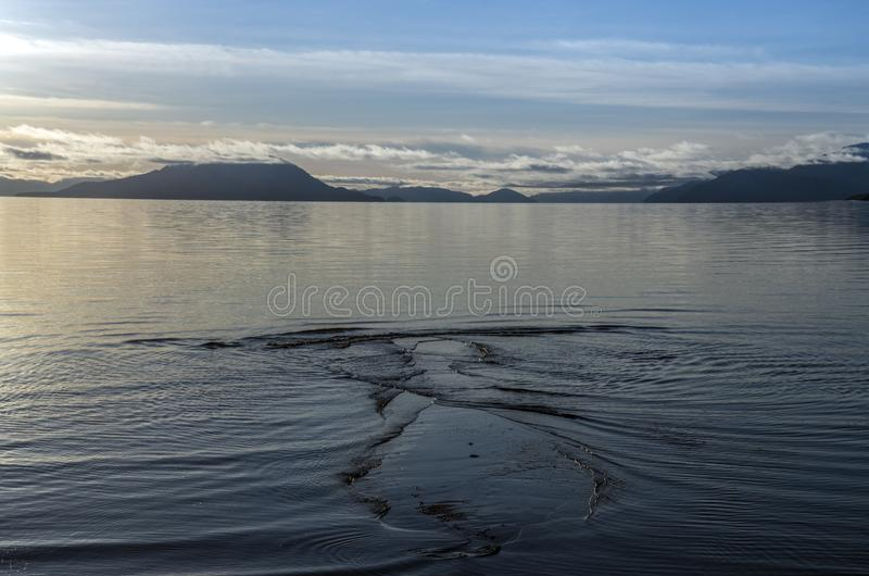 Ondulazioni di marea al tramonto fotografia stock
