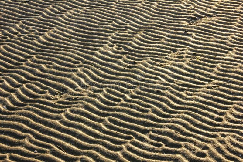 Ondulazioni nella sabbia immagine stock