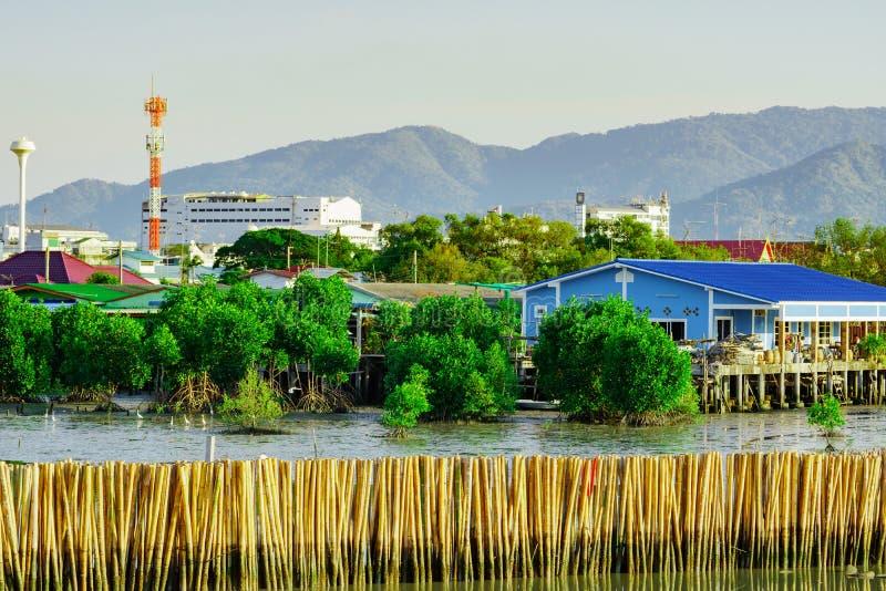 Ondulez la barrière de protection faite à partir des bambous secs à la forêt i de palétuvier images libres de droits