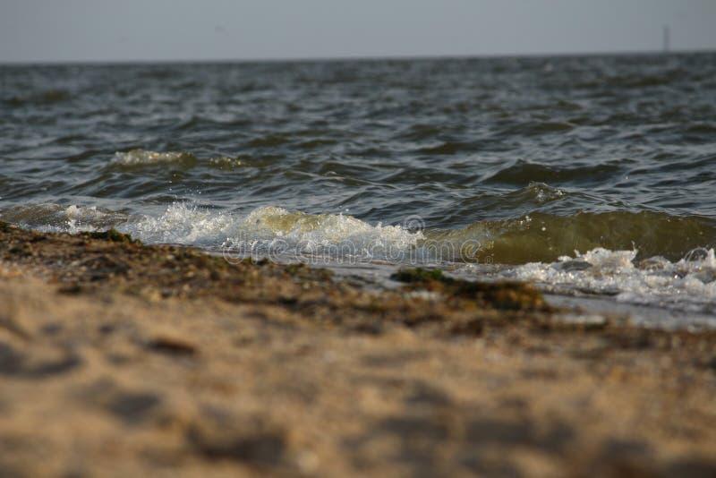 Ondulez le roulement sur le rivage arénacé de la Mer Noire, Ukraine image libre de droits