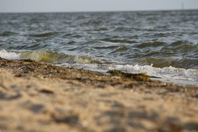 Ondulez le roulement sur le rivage arénacé de la Mer Noire, Ukraine photo libre de droits