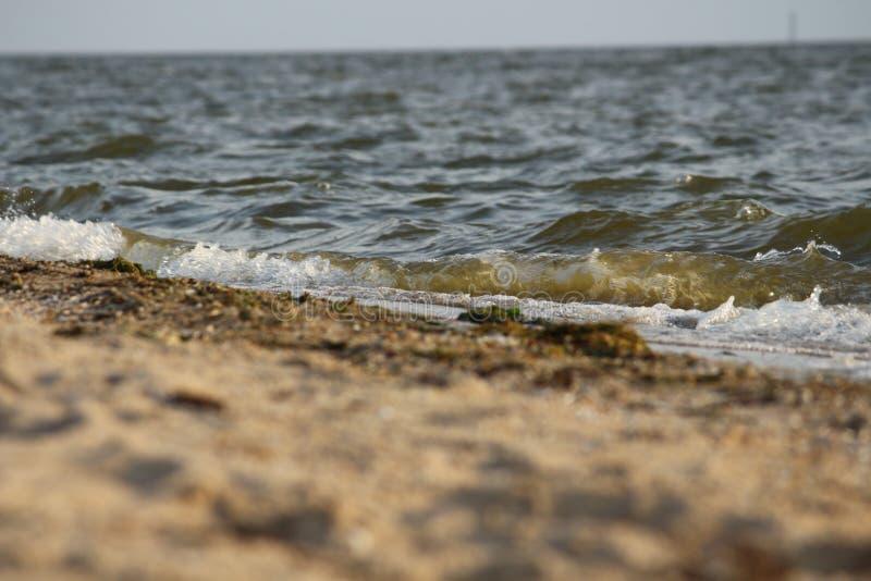 Ondulez le roulement sur le rivage arénacé de la Mer Noire, Ukraine photographie stock libre de droits