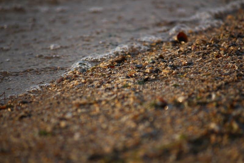Ondulez le roulement sur le rivage arénacé de la Mer Noire, Ukraine photo stock