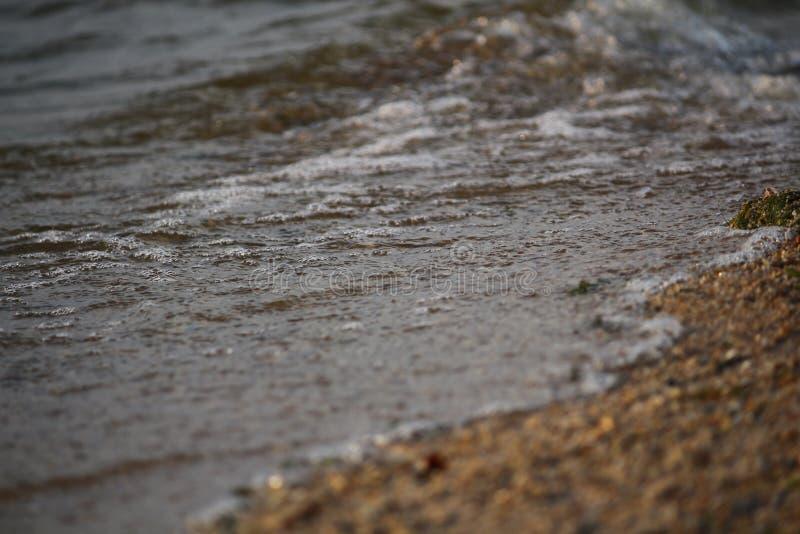 Ondulez le roulement sur le rivage arénacé de la Mer Noire, Ukraine photos libres de droits