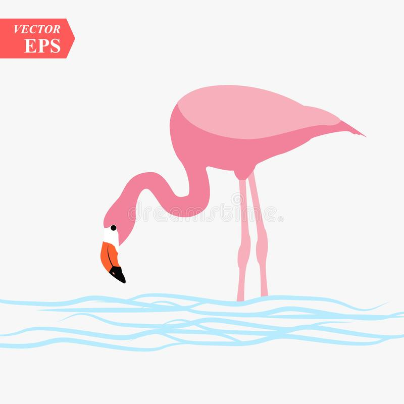 One adult pink flamingo walking on water. Isolated on white background vector illustration
