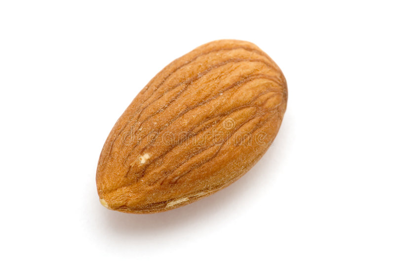 One almond royalty free stock images