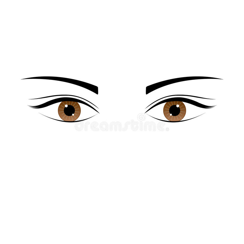 One beautiful brown color caucasian female eye wide open with eyebrow and eyelash. Eye icon, simple drawing graphic design, art image illustration, isolated on vector illustration