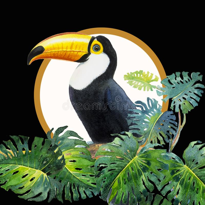 Toucan bird sitting on the branch with monstera. One Bird with Big beak, Toucan bird sitting on the branch with monstera leaf Monstera deliciosa in black royalty free illustration